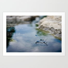 -On the Surface Art Print