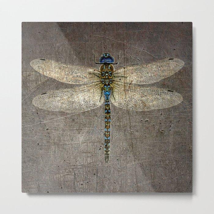 Dragonfly On Distressed Metallic Grey Background Metal Print
