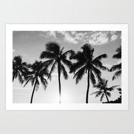 Hawaiian Palms II Art Print