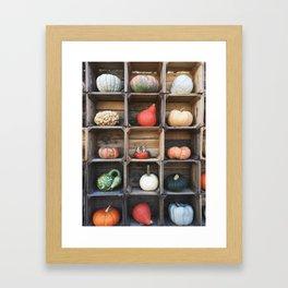 Grid of Gourds Framed Art Print