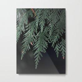 Moody Evergreen No.02 Metal Print