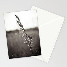 Prairie Wild Stationery Cards