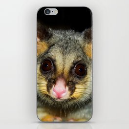 Waddaya Doin' (Brushtail Possum) iPhone Skin