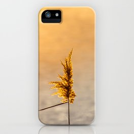 Reed tip in Camargue iPhone Case
