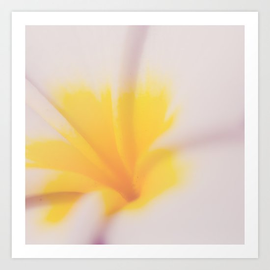 Yellow & Pink Art Print