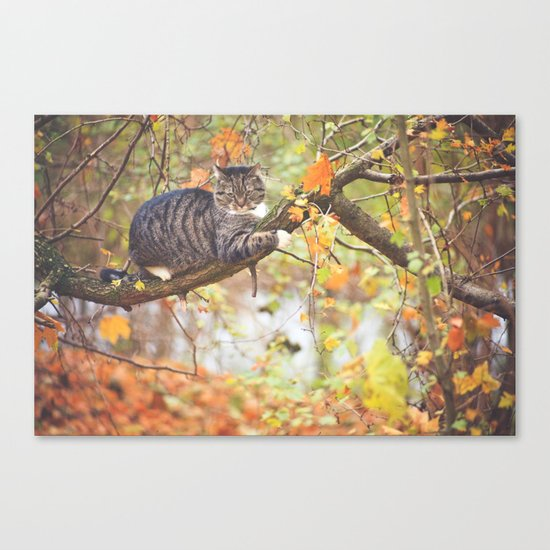 Rufi waiting for Alice Canvas Print