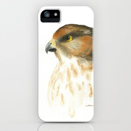 juvenile red-tailed hawk iPhone Case