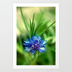 Blue Button Art Print