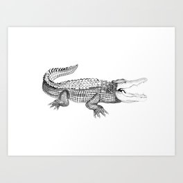 The Crocodile Art Print