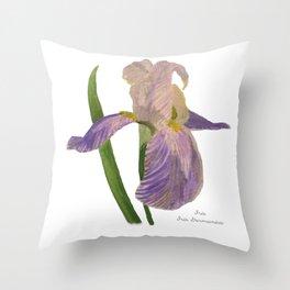 Purple Iris: Iris Germanica Throw Pillow