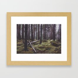The enchanted forest Framed Art Print