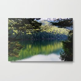 Bush Reflections Metal Print