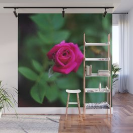 Tiny Pink Rose Wall Mural