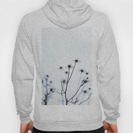 wildflower - he loves me, he loves me not Hoody