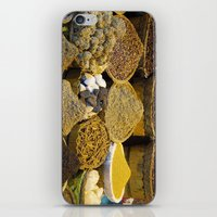 egyptian iPhone & iPod Skins featuring Egyptian Spices by Brian Raggatt
