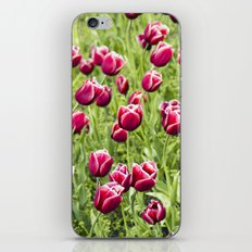 Tulips will remember  iPhone & iPod Skin