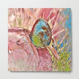 Male Mallard Duck Chilling Out in Grass Metal Print