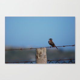 Singing out loud!! Canvas Print