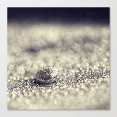 Silver Drop Canvas Print