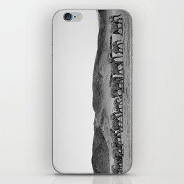 Damaraland Desert Elephants iPhone Skin