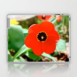 Red Portal Laptop & iPad Skin