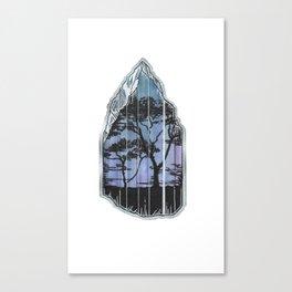 Tanzanite. Canvas Print