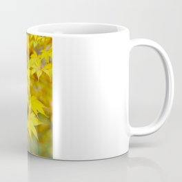 Japanese maple in yellow and orange Coffee Mug