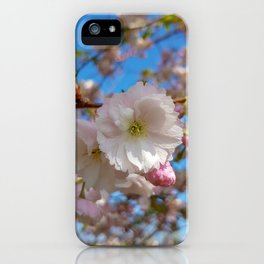Cherry Blossoms at Kew Gardens iPhone Case