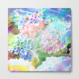 Hydrangeas in Water Metal Print
