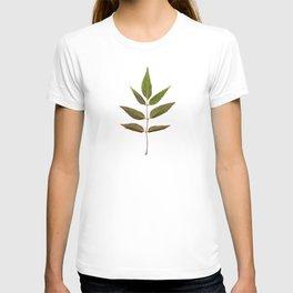 Leaf Botanical Print T-shirt