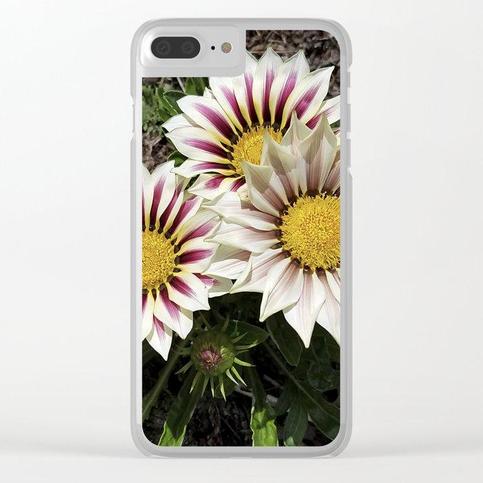 Zany Gazania - red and white stripes Clear iPhone Case