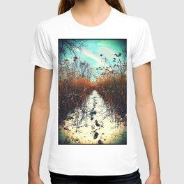 Distant Rainbow T-shirt