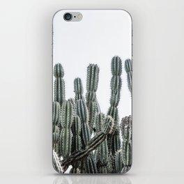 Minimalist Cactus iPhone Skin