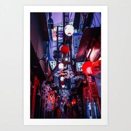 Flowers and Lanterns Art Print
