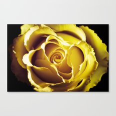 Heat Canvas Print