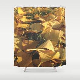 Beautiful Ginkgo leaves Shower Curtain