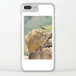Cape Wagtail Clear iPhone Case