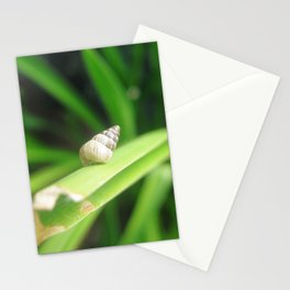 Solo shell Stationery Cards