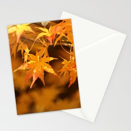 Colorful Japanese Maple Leaves In Fall Photography Stationery Cards