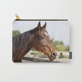 Handsome Gulliver Carry-All Pouch