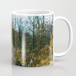 Fallen And Broken Trees After Storm Victoria February 2020 Möhne Forest 5 Coffee Mug