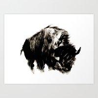 buffalo Art Prints featuring Buffalo by Maddi Matthews