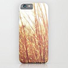 Golden  Grass Slim Case iPhone 6