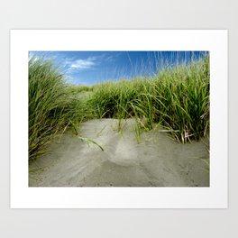 Beach Grass path to the Ocean  Art Print