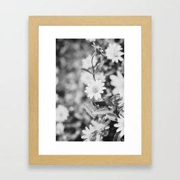 Let's live here Framed Art Print