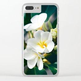Pua Melia Na Puakea Onaona Tropical Plumeria Maui Hawaii Clear iPhone Case