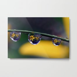 tripple yellow petals Metal Print