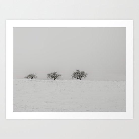 Declining Trees Art Print