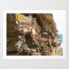 Big Rock by the beach Art Print