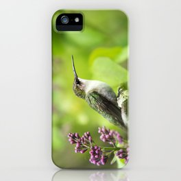 Hummingbird with Lilacs iPhone Case